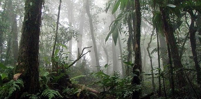 La Amistad International Park
