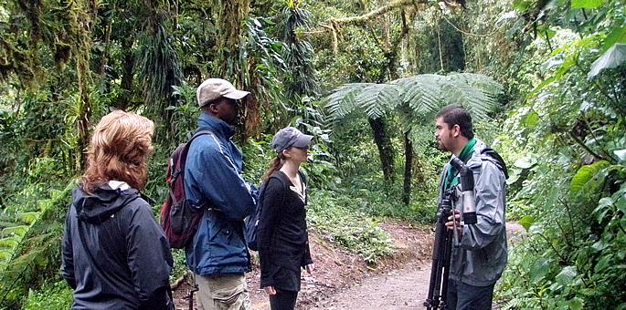 Lava and Cloud Forest Adventure – Tourist Class